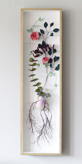 Cor Botanica vi