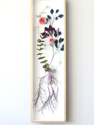 Cor Botanica V