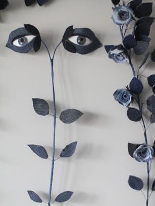 Lucia Detail