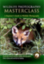 Wildlife Photography Masterclass DVD cover