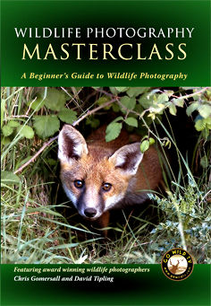Wildlife Photography Masterclass DVD cover
