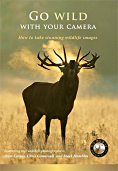 Go Wild with your Camera DVD cover