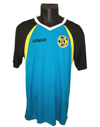 St. Lucia 2014/15 Home