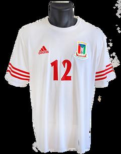 Equatorial Guinea 2014 Home Matchprepared Thierry Fidjeu-Tazemeta
