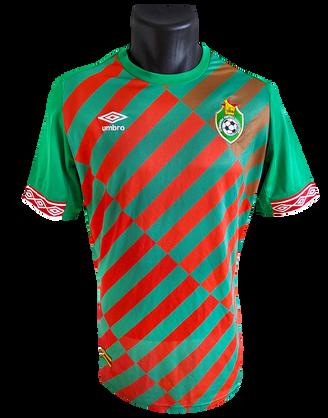 Zimbabwe 2019 Away (Rejected design)