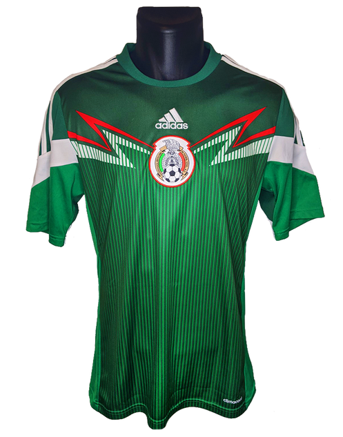Mexico 2013/14 Home