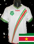 Suriname 2009/11
