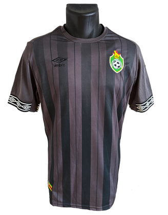 Zimbabwe 2019 Goalkeeper