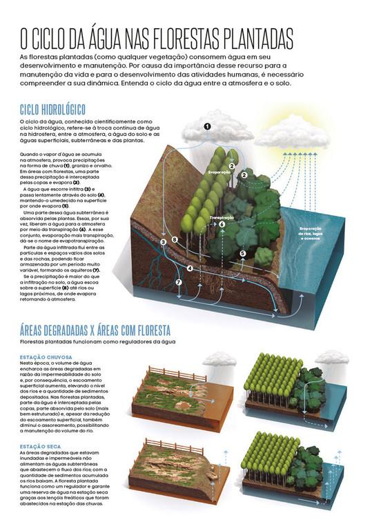 iba_ciclo_hidrico_poster1.jpg
