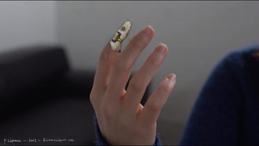 Schalentiere