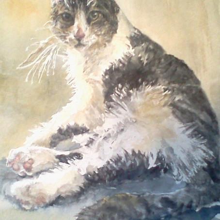 Olive the Cat- A Pet Portrait