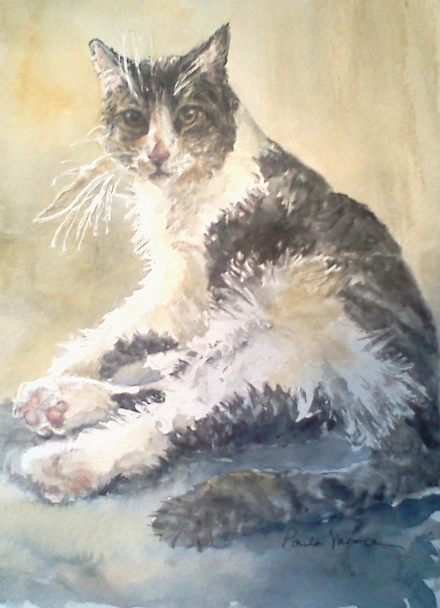 Olive The Cat by Paula Moore Art