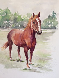 Dandy's Custom Pet Portrait by Paula Moore