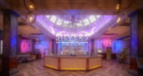 REAL ONE TO USE SILVERS.PNG
