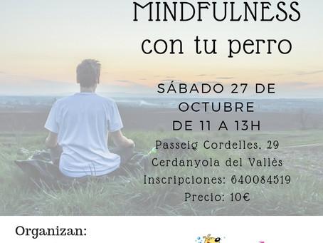 MINDFULNESS CON TU PERRO