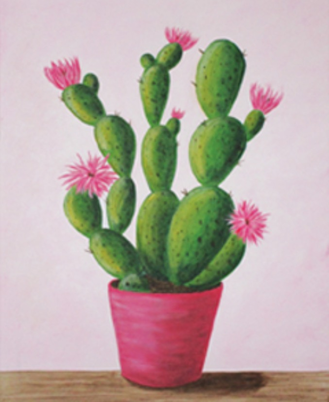 Cactus in Bloom.jpg