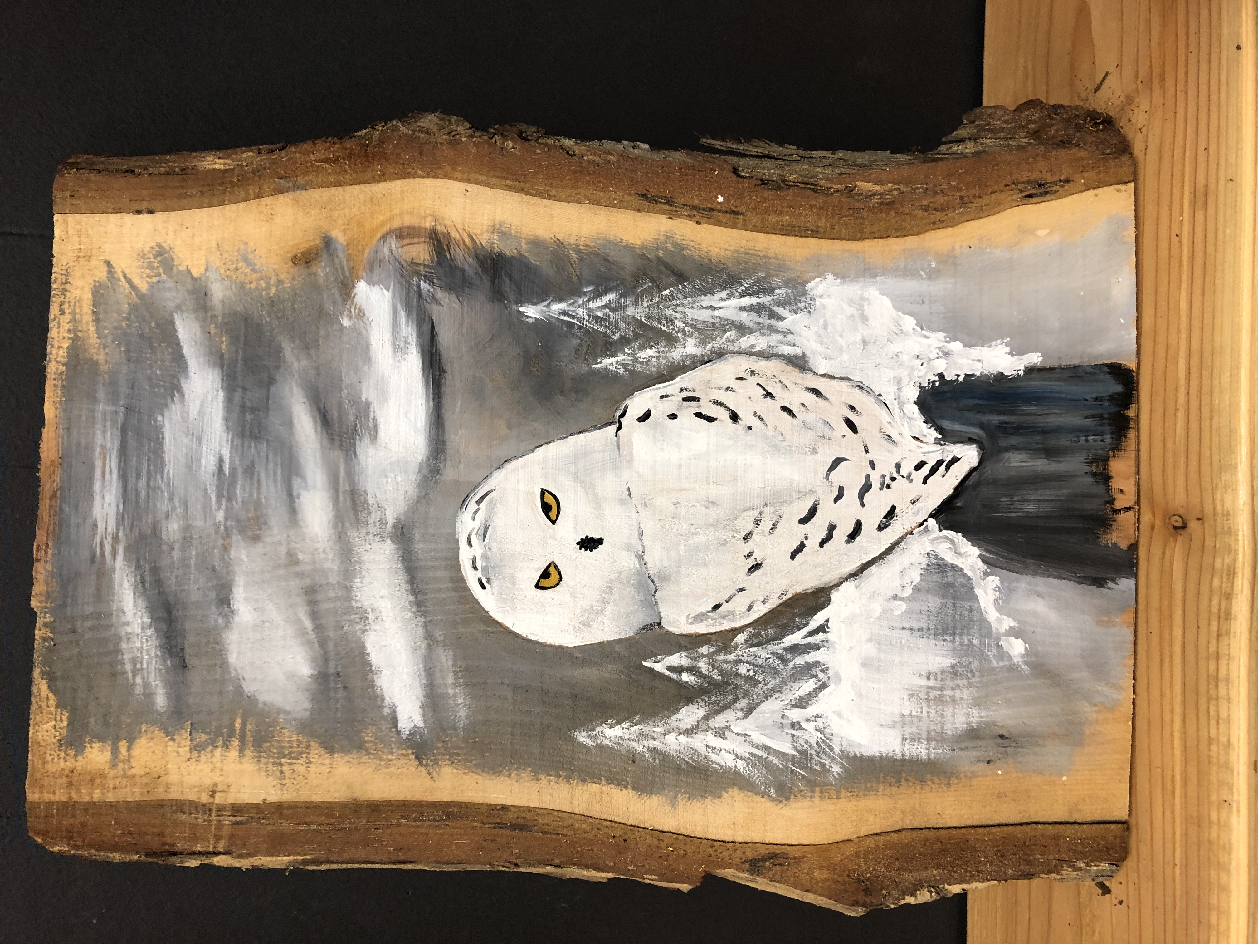 Snow Owl on Wood