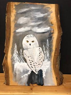 Snow Owl on Wood