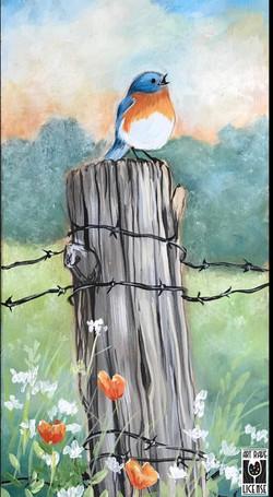 Country Song Bird