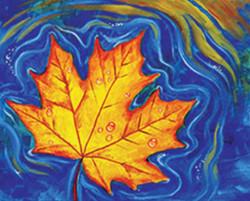 Fall Leaf in Water