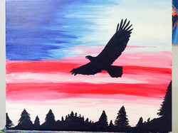 Freedom Flying.jpg