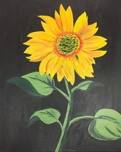 Sunflower #2.jpg