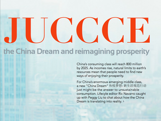 Global Engineering Consultancy Catches up with JUCCCE