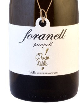 Quim Batlle Foranell Picapoll 2017 75 cl.