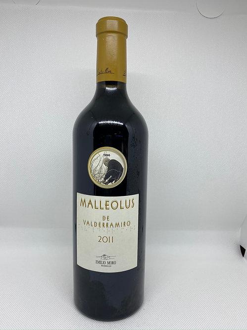 Malleolus de Sanchomartín 2011