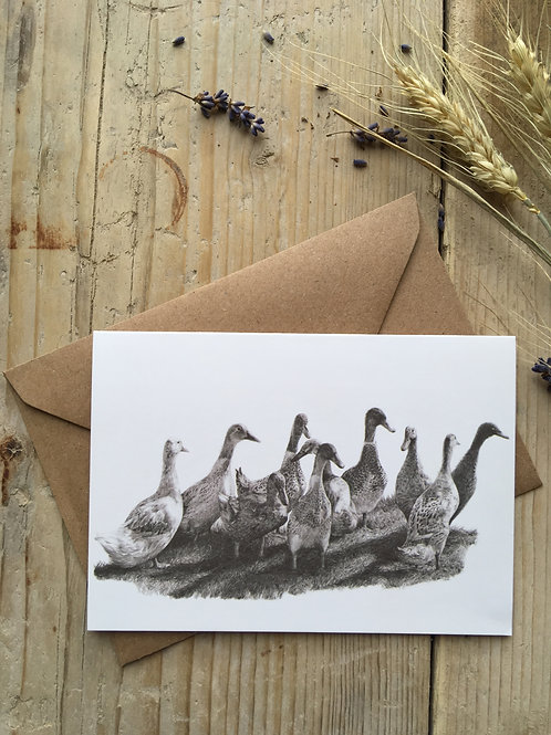 Indian runner duck greeting card 'Ducking about'