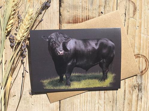 Aberdeen Angus Bull greeting card | 'Progress'