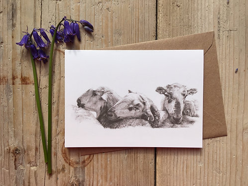 Sheep Greeting Card 'Lean on me'