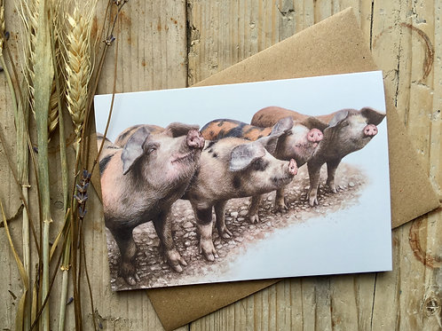 Gloucester old spot pig greeting card | 'Pinky, Perky, Porky and Pie'