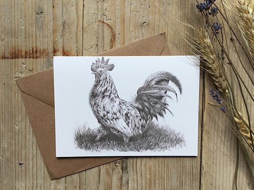 Cockerel greeting card 'Standing tall'