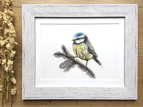 Blue Tit original watercolour and fineliner