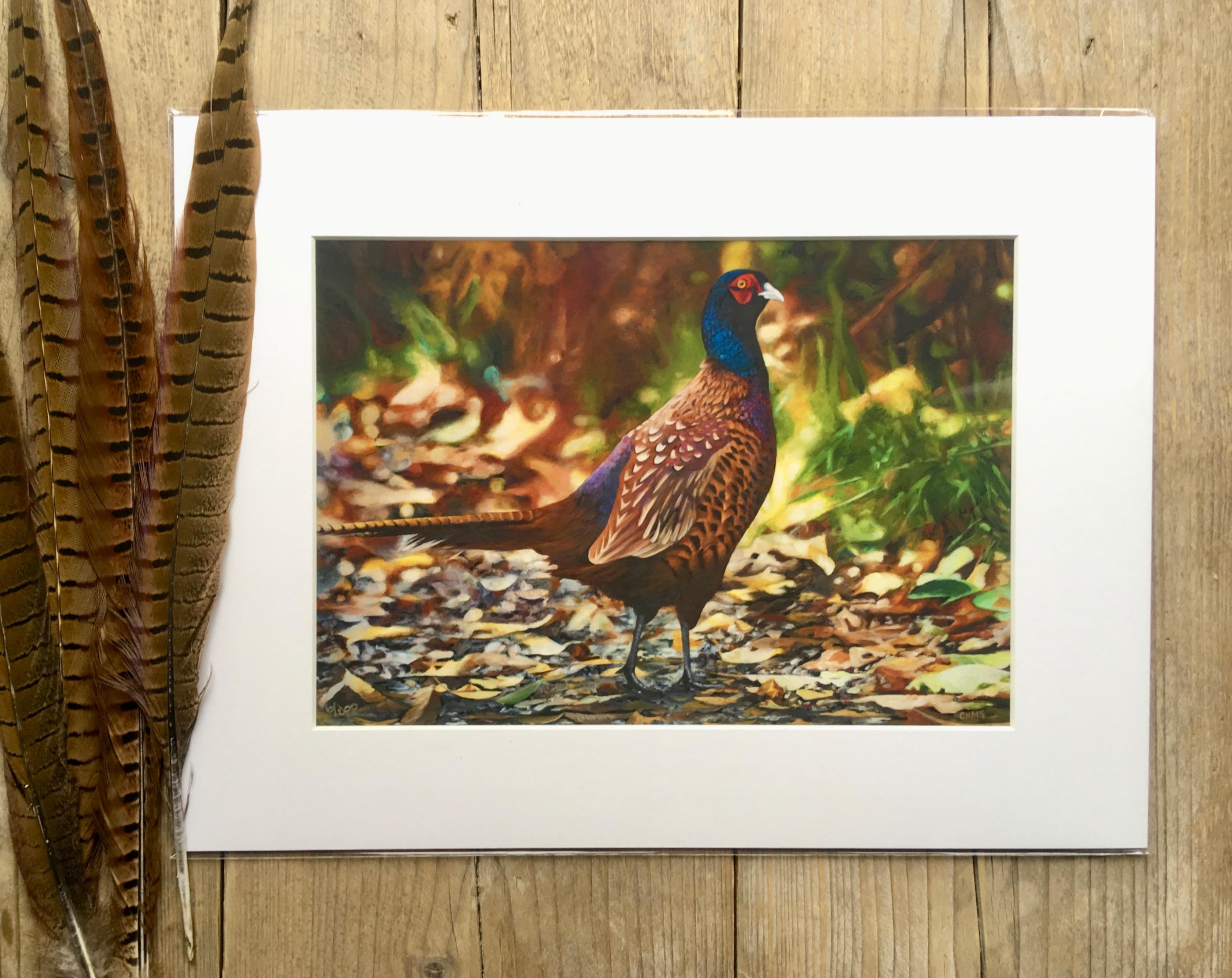 Pheasant 'Autumn Bliss'