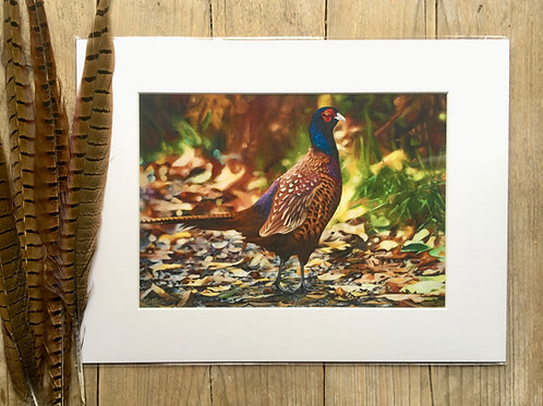 Pheasant giclee print | Autumn bliss