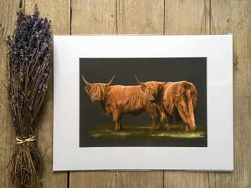 Highland cow giclee print | Highland duo