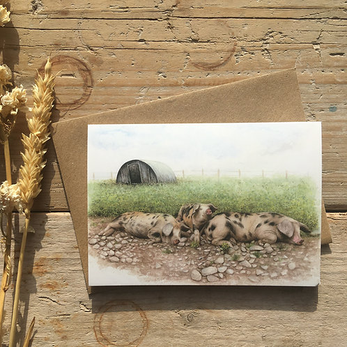 Gloucester old spot pigs '40 winks' greeting card