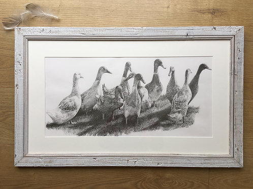 Runner Duck original pencil drawing | Ducking About