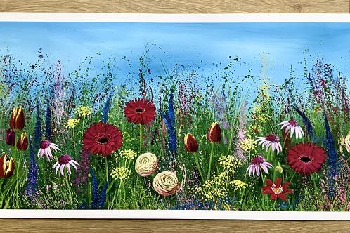 'Gerbera Meadow' | Large Print
