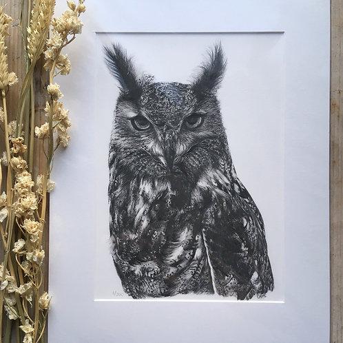 Eagle owl giclee print | Elsa