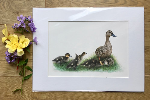 Duck and ducklings giclee print | Family time