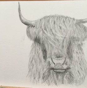 Sheila's first drawing
