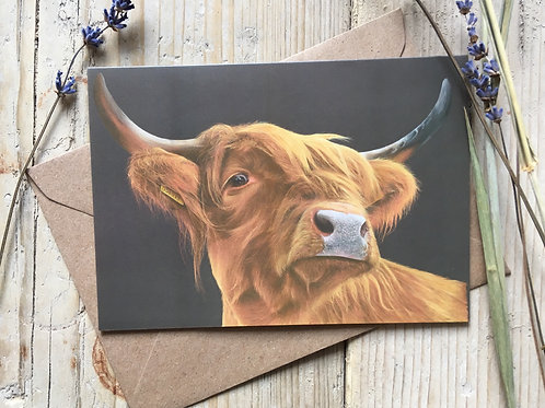 Highland Cow greeting card 'Highland Coo'