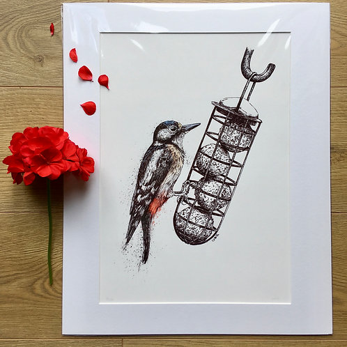 'Red Spotted Woodpecker' Giclee print