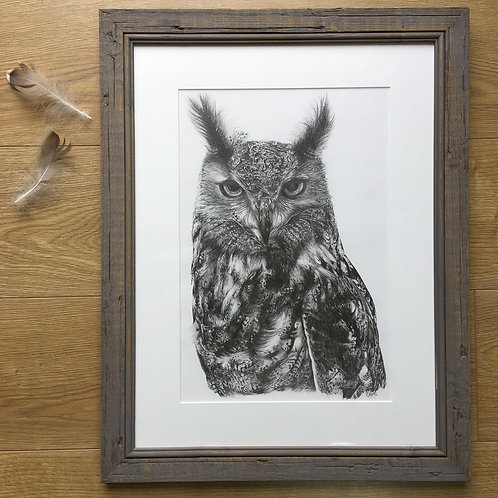 Eagle owl original pencil drawing | 'Elsa'