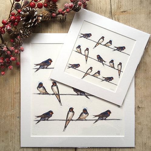 Swallows Gicleé Print '13 Swallows'