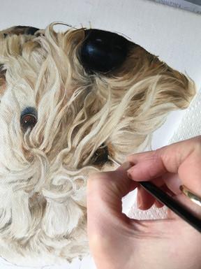 'Bentley' flat coated wheaten terrier