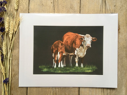 Hereford Cow giclee print | Hereford cow and calf